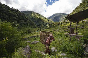 Himalaya walk van Merijn Geurts