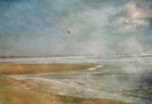 kust van Claudia Moeckel