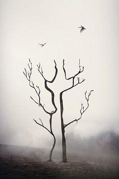 A couple of trees van Elianne van Turennout