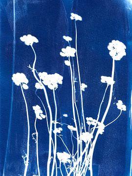 Getrocknete Blumen in blau von Karin van der Vegt