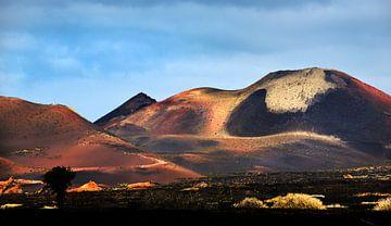 Timanfaye Nationalpark Lanzarote von