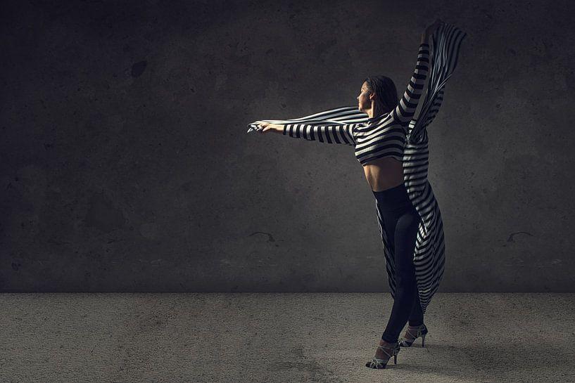 Tanz mit schwarz und weiß von Arjen Roos