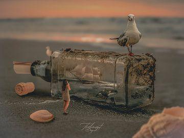 brief in een fles van Stephan Dubbeld
