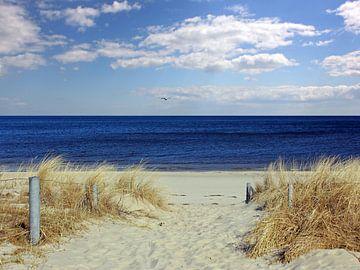 Strandaufgang im März van Ostsee Bilder