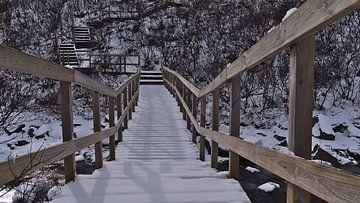 Houten brug in de winter van Timon Schneider