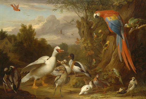 Een ara, eenden, papegaaien en andere vogels in een landschap, Jakob Bogdány