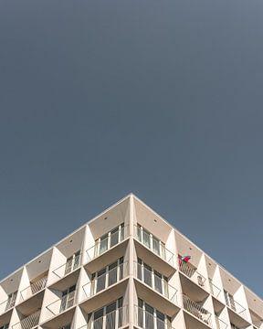 Zomer in Antwerpen van Koen Geens