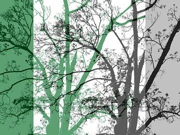 Tree Magic 64 van MoArt (Maurice Heuts)