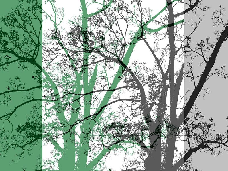 Tree Magic 64 sur MoArt (Maurice Heuts)