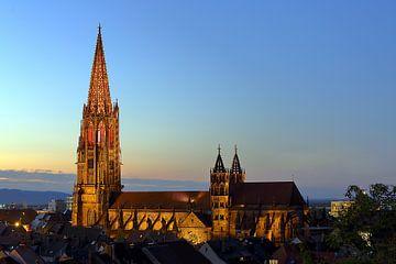 Illuminiertes Freiburger Münster von
