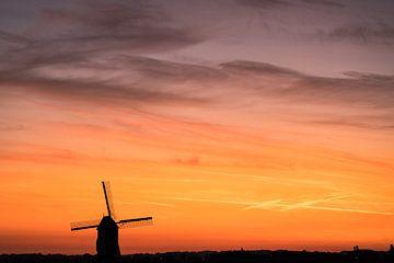Vinkemolen est un moulin à vent sur Marcel Derweduwen