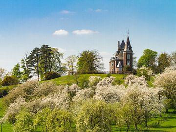 Schloss Hulsberg umgeben von Blüten von Easycopters