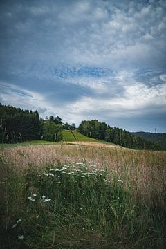 In de natuur van Thilo Wagner