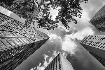 Wolkenkrabbers downtown Chicago Verenigde Staten.