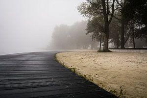 Mist boven het meer