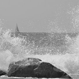 Splash van Joyce Derksen