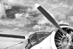 Antonov AN-2 in Zwart Wit van Jan Brons
