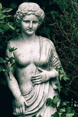 Tuinbeeld met klimop van Ellen Driesse