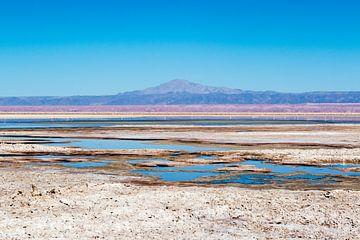 Bunte Chaxa-Lagune in der Atacama-Wüste in Chile, Südamerika von WorldWidePhotoWeb