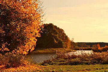 Herbstzauber von Peter Schmidt