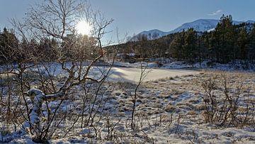 Winter in Norwegen. von Michael Schreier