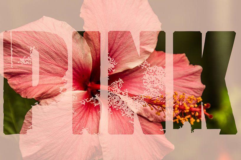 Roze bloem met tekst pink van Koop je Canvas