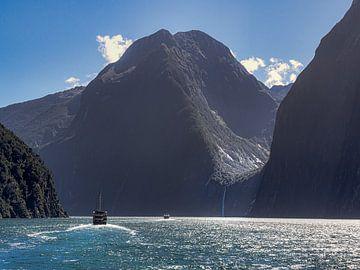 Een boottocht in het wereldberoemde Milford Sound in Nieuw-Zeeland van Rik Pijnenburg