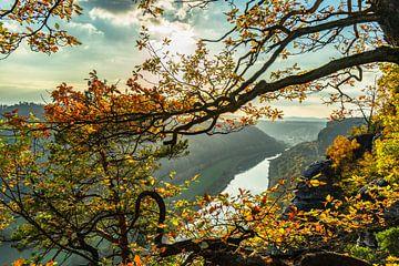saxisch zwitserland met zicht op de elbe rivier, duitsland van Dörte Stiller