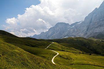 De weg naar Grote Scheidegg in de Zwitserse Alpen van Maurice Haak