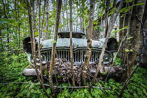Oude auto in het bos van