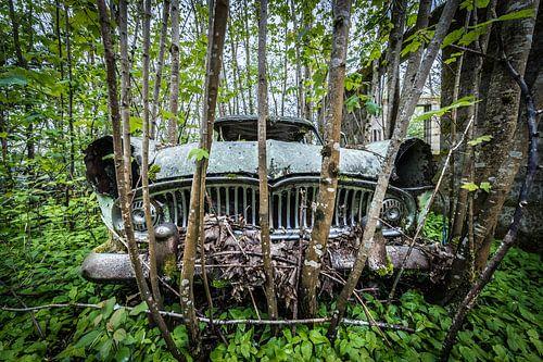 Oude auto in het bos van Inge van den Brande