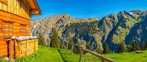 Alm, Allgäu Alps