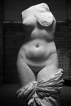 Vrouwelijk naakt , Venus/ Aphrodite von Dirk Huijssoon