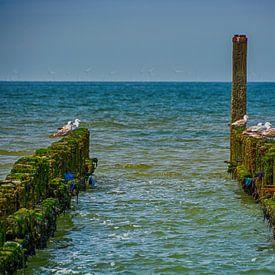 Brise-lames dans la mer sur Roland de Zeeuw fotografie