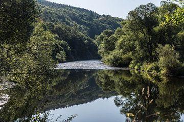 Spiegelende rivier van ProPhoto Pictures