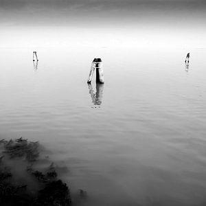 Laguna Murano von