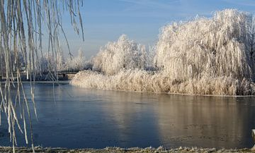 winter in Almere van Beer Foto
