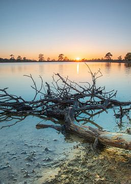 Sonnenuntergang von Richard Lubbers