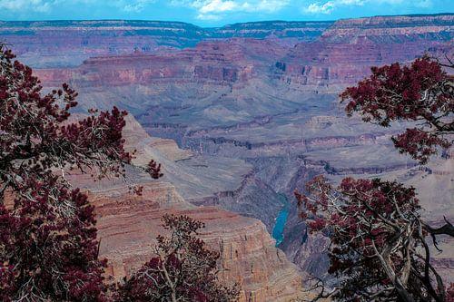 De Coloradorivier stroomt door de Grand Canyon