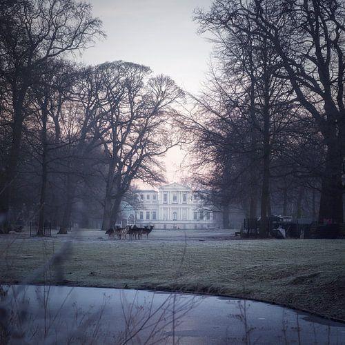 Park De Hout met doorzicht naar Villa Welgelegen.