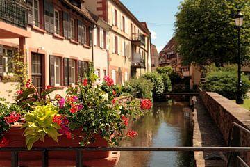 Kleiner Fluss Frankreich von Kees de Knegt