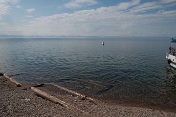 kust van lake baikel van Robert Lotman