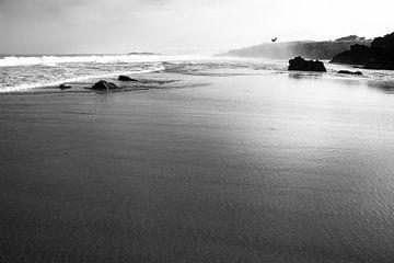 Am Strand in Portugal - schwarzweiß Foto von FOTOFOLIO.DE