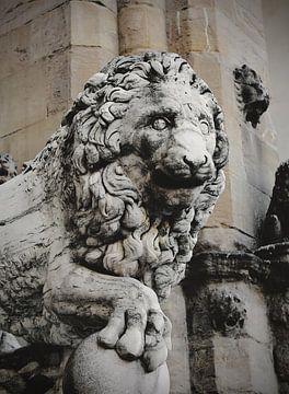 Imposante leeuw van Nannie van der Wal