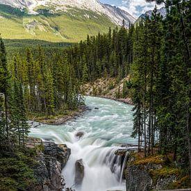Sunwapta Falls van Joris Pannemans - Loris Photography