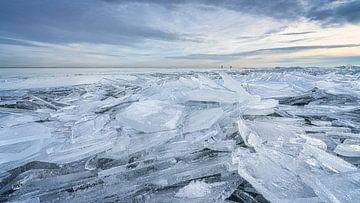 Arctic Holland.....