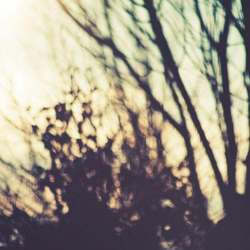 Melancholia van Insolitus Fotografie