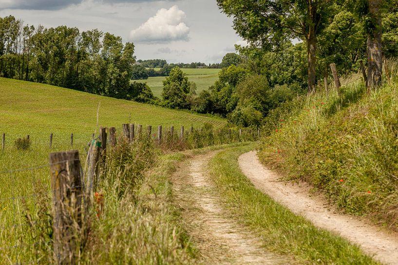 Holle weg bij Simpelveld in Zuid-Limburg van John Kreukniet
