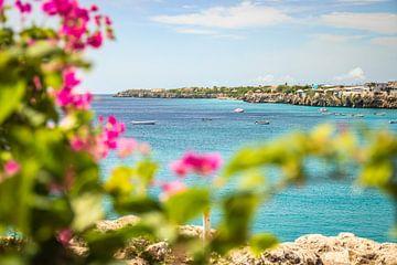 Ansicht von Westpunkt Curacao von Eiland-meisje