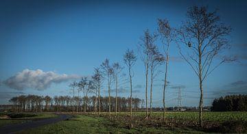 Valtherdijk, Valthermond, Drenthe. von Kees Rustenhoven
